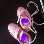 Антибактериальная сушилка для обуви