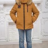 Курточки Зимние на мальчика